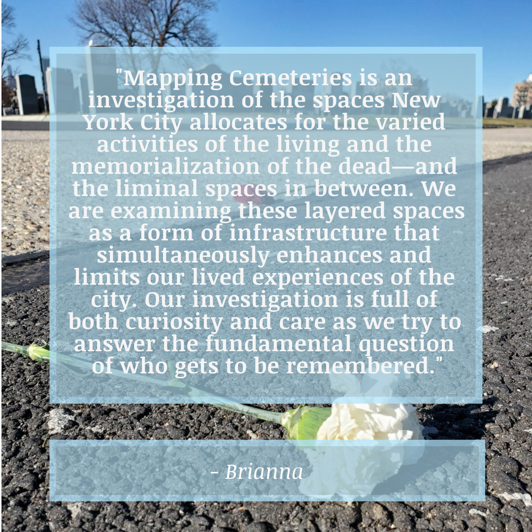 Carnations in Calvary Cemetery with Bri's Definition of Mapping Cemeteries